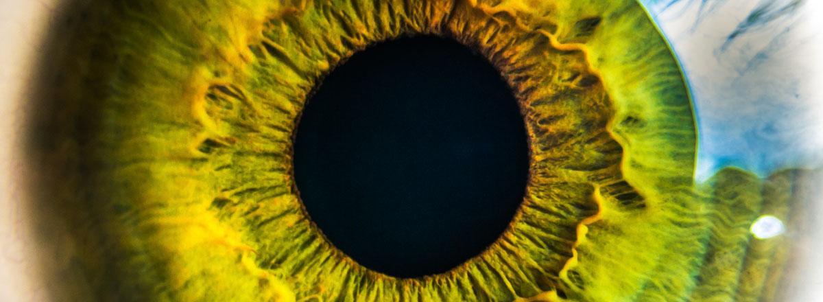 Diabetes and Eye Screening