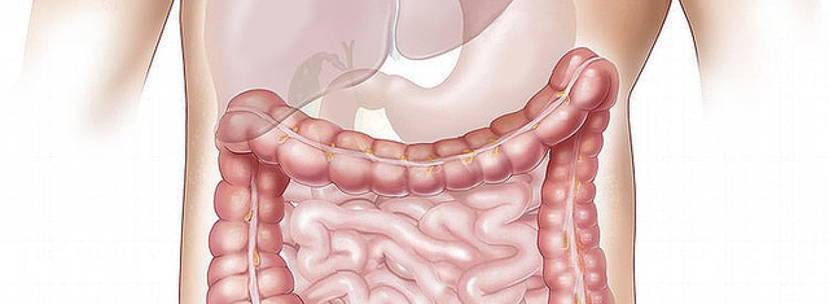 Gastrointestinal Stromal Tumours